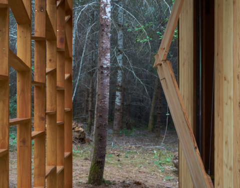 """Emerge""    Bauman Tree Farm Retreat"